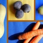 Seizoensgroenten uit Nederland: groente en fruit in oktober