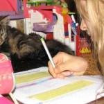 Eigenwijs blij onderwijs: mix van thuis, klassikaal & iederwijs?