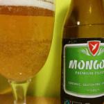 Mongozo bier: biologisch, glutenvrij, fair trade, maar is het lekker?