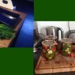 Gewoon doen: van komkommer naar augurk