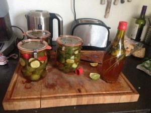 komkommer-augurk-6
