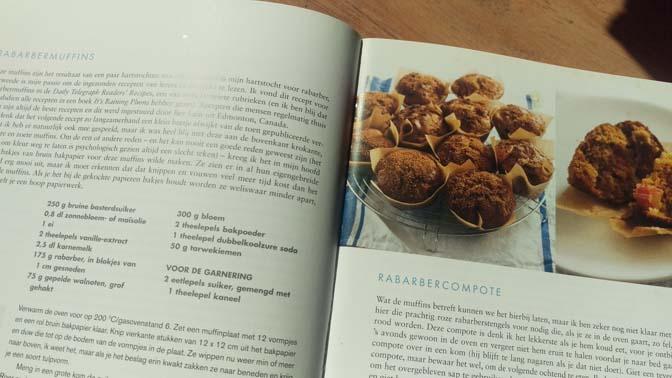 rabarber-muffins