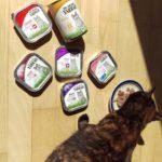 Test: Yarrah biologisch en vaak graanvrij kattenvoer en hondenvoer