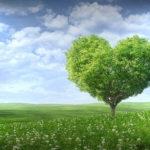 Over hoe de veganist en de niet-veganist nog lang en gelukkig leefden
