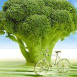Tips die je als beginnende veganist (of flexi-vegan) goed kunt gebruiken #veganchallenge