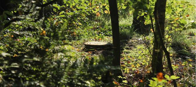 natuurgraf-gedenkteken-houten-schijf