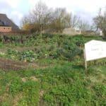Op bezoek bij biodynamische kwekerij De Eemstuin in Uithuizermeeden