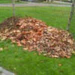 Gratis compost zelf maken, maar dan makkelijker