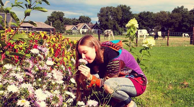 16 liedjes over de pracht van de natuur en het buitenleven: Hurrah for Nature