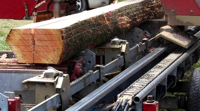 Hoe duurzaam is hout? Kanttekeningen en overwegingen voor de toekomst