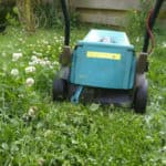 Gratis gazonbemesting met deze grasmaaier-hack