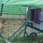 Automatische deur voor je Omlet kippenhok: is dat echt handig?