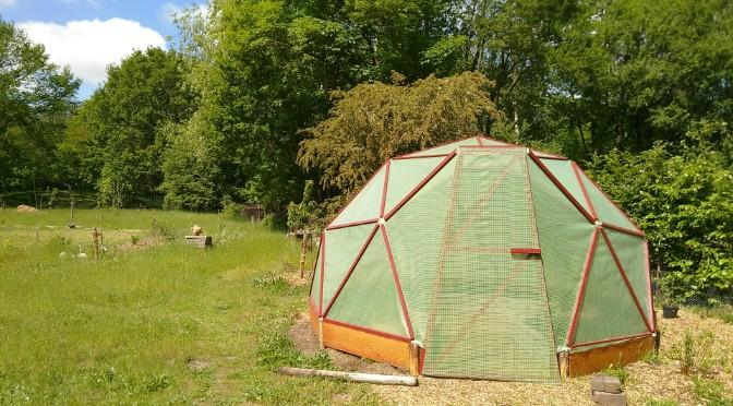 Zelf een geodome kas voor de groentetuin maken met een geodesic dome kit