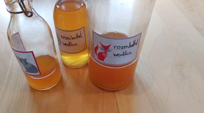 Likeur maken met rozenbottels: recept rozenbottelwodka