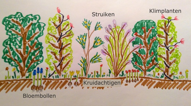 Ontwerp mooie gemengde haag voor beschutting, biodiversiteit en insecten