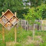 Zelf een bijenhotel maken dat écht goed werkt; stappenplan en veel uitleg