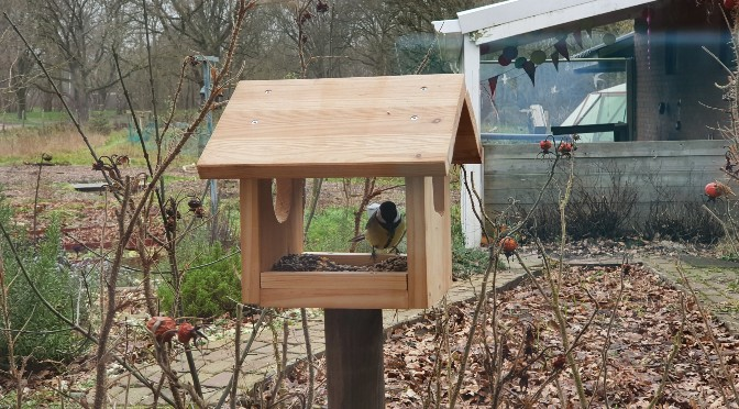 Stappenplan: Zelf een voederhuisje voor vogels maken (met kinderen)